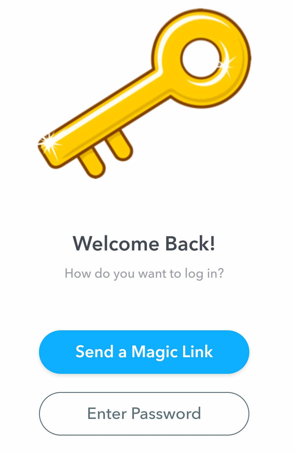 a blue button to Send a Magic Link is located in the lower half of the screen