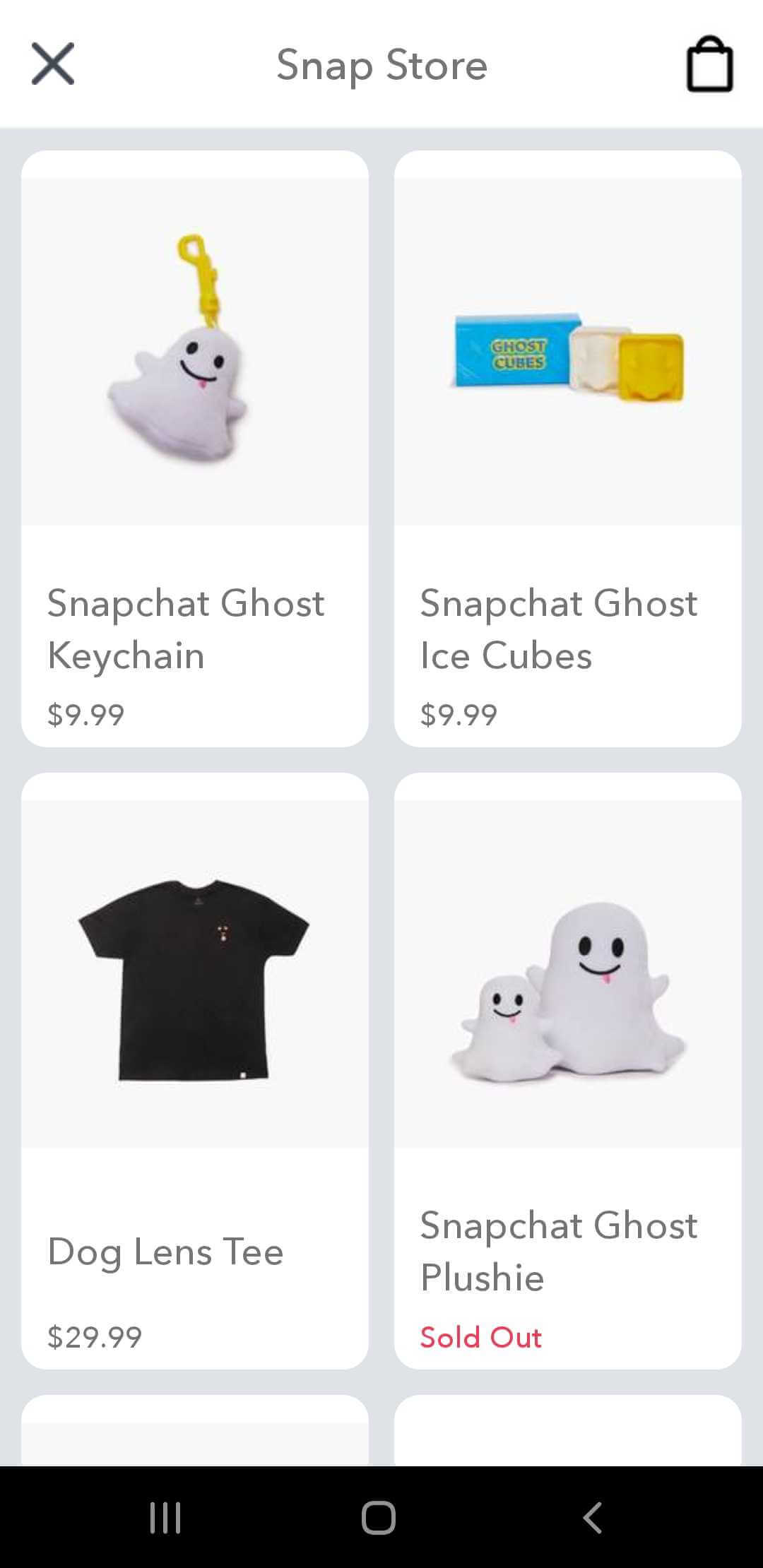 the main page of Snap store
